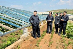 Kim Jong-Un inspects vegetable greenhouses on a farm in South Pyongan.