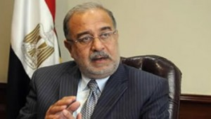 Egyptian Petroleum Minister Sheriff Ismail