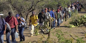 Illegals swarm southern border before Trump's wall