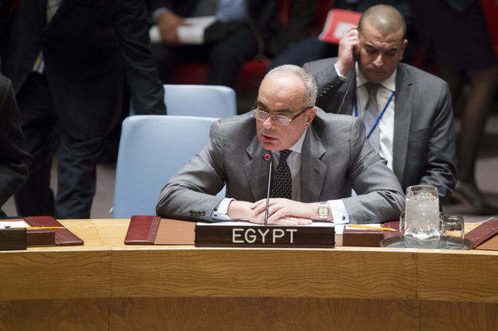 Egypt blocks U.S.-drafted UN statement backing Turkish government