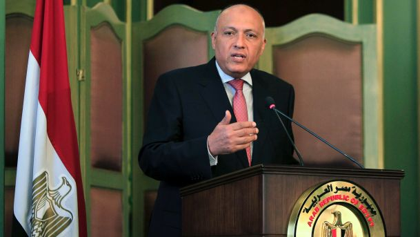 Egypt foreign minister: Israeli policies 'not terrorism'
