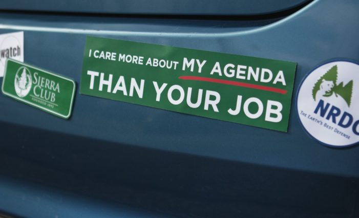 Voters gave a resounding 'No' to mean Green extremists
