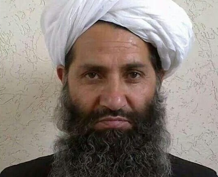 Meanwhile in Afghanistan, Taliban has revived and conflict escalation seems likely