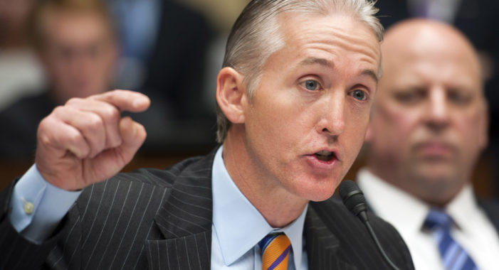 Trey Gowdy defends Intelligence Committee Chairman Nunes with gusto