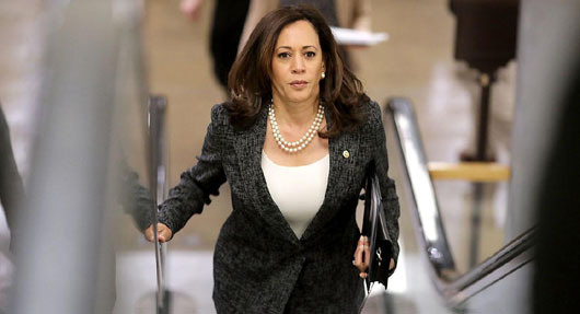'Take it to the bank': Kamala Harris 'absolutely' running for president in 2020