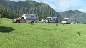 A procession of Emergency Medical Services vehicles honored the memory of Hawaii's Health Director Loretta Fuddy last month in Oahu.