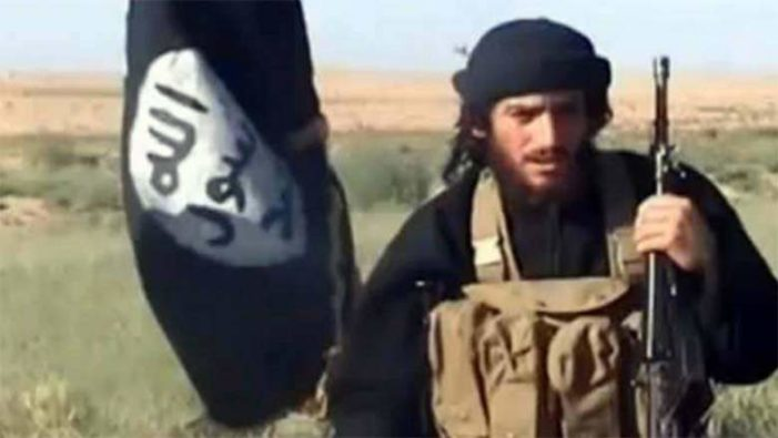 Pentagon confirms ISIL spokesman killed by Hellfire missile fired by Predator drone