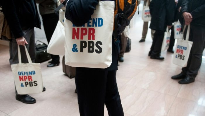 Shock and awe: Trump plan defunds public broadcasting, slashes swamp budgets