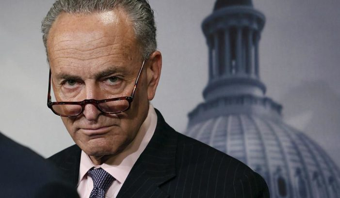 Democrats behaving badly: Schumer loudly berates prominent Trump supporter at posh-restaurant