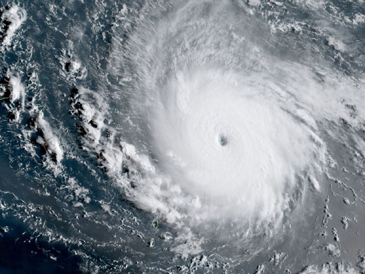 The hurricane from hell: Is the climate change lobby 'criminally complicit'?