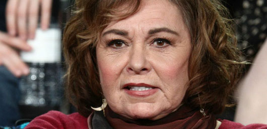 In revived sitcom, Roseanne Barr's character is a Trump fan