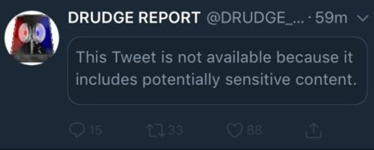 Twitter censors Drudge tweet of Trump 2020 slogan as 'sensitive content'