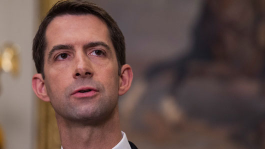Sen. Cotton: Both Feinstein and lawyers under investigation over 'victimized' accuser
