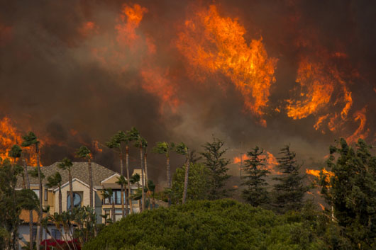 Inconvenient data points on those California wildfires