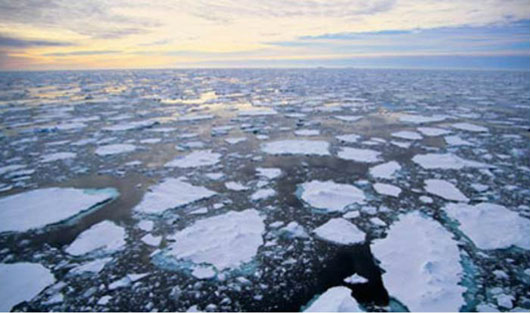 Scientists forced to correct peer-reviewed ocean warming report: 'We really muffed the error margins'