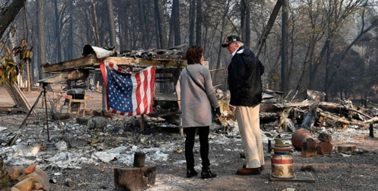 Logging council backs Trump on forest management as factor in wildfires