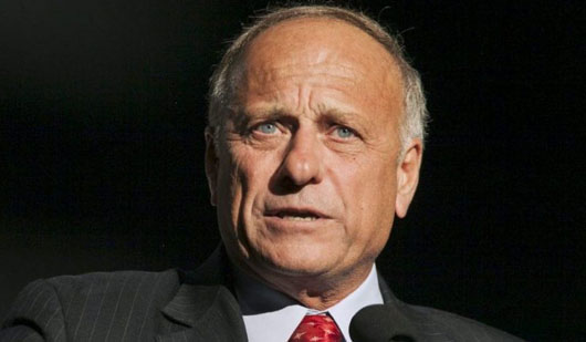 Many Americans do not agree with MSM view of Rep. Steve King as racist