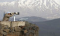 Iran-backed Hizbullah strengthens ties with Lebanon, Yemen; Israel IDs missile commander