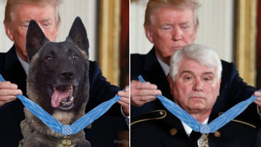 Major media melted down, but medal of honor recipient laughed at hero dog photo