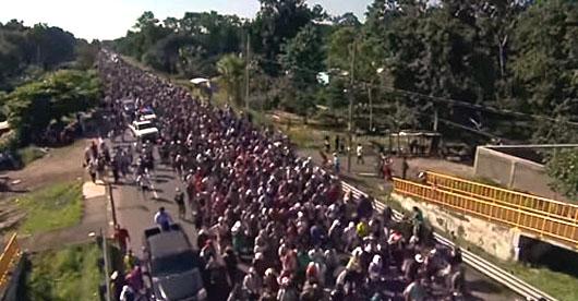 Fruits of open border policies: Discrimination, exploitation