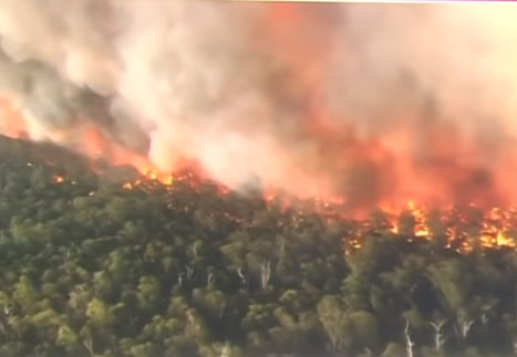 Reports: Many Australia bushfires were deliberately set