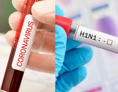Who remembers the swine flu panic of 2009? Media scramble to rebut comparisons