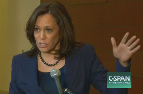 Kamala Harris lauds 'brilliant' Black Lives Matter as 'essential' for change in America