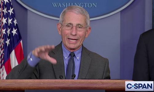 He's back: Fauci doesn't want you to vote in person which is why that is important, explains Limbaugh