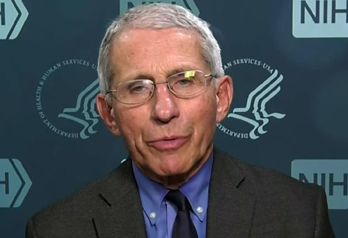 Fauci to Americans: 'Bite the bullet' and cancel Thanksgiving