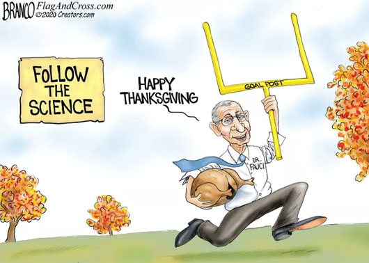 Thanksgiving collection, 2020: An abundance of irony