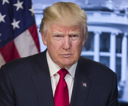 Orwellian Left has already begun reeducation campaign to 'erase' Donald Trump