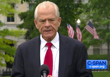 Navarro: Americans need to see some 'backbone' from politicians, 'or this republic is going to perish'