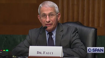 One year late, Fauci's agency releases documentation for $826,000 in grants to Wuhan lab