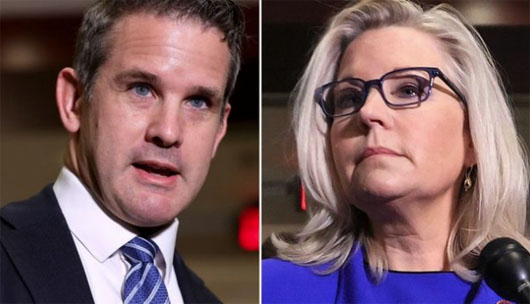 Kick Them Out: Republicans call for Democrat tools Kinzinger and Cheney to just leave