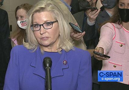 In Pelosi's orbit? Liz Cheney joins Jan. 6 inquisition panel